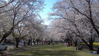 2012-04-04_15-33-31_161.jpg